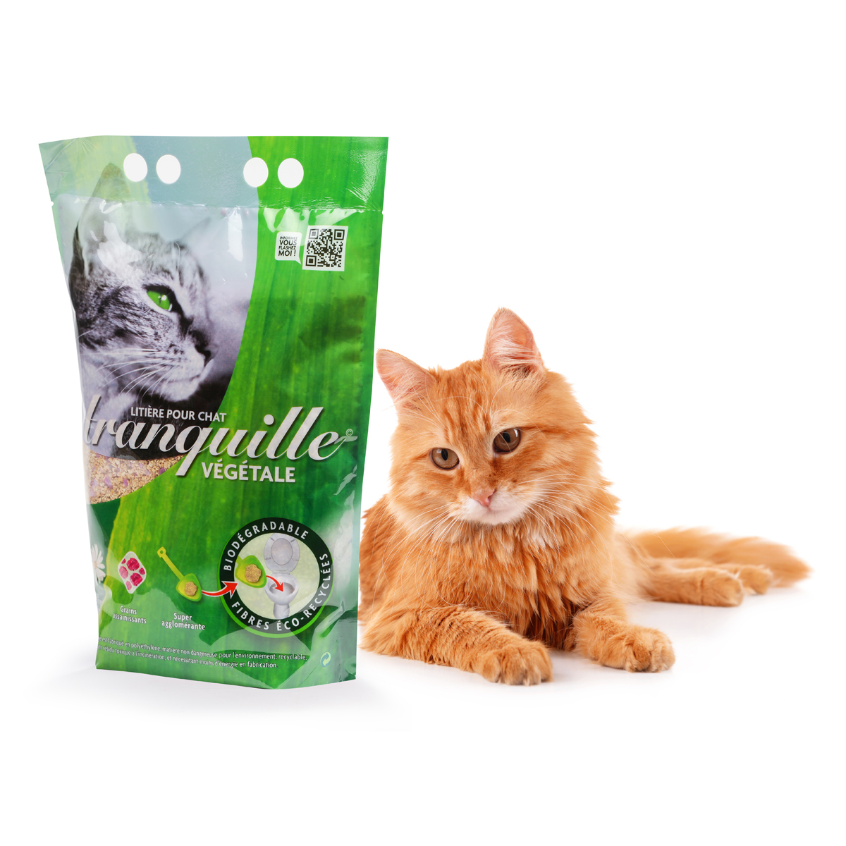 litiere chat leclerc eco+